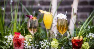 cocktailbar tuinfeest